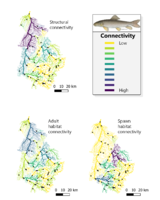 Freshwater connectivity conservation in Quebec's Yamaska watershed