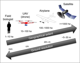 The Canadian Airborne Biodiversity Observatory
