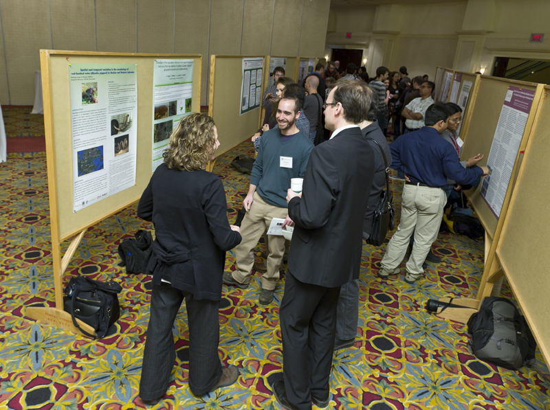 Sessoin d\'affiches. Poster session.