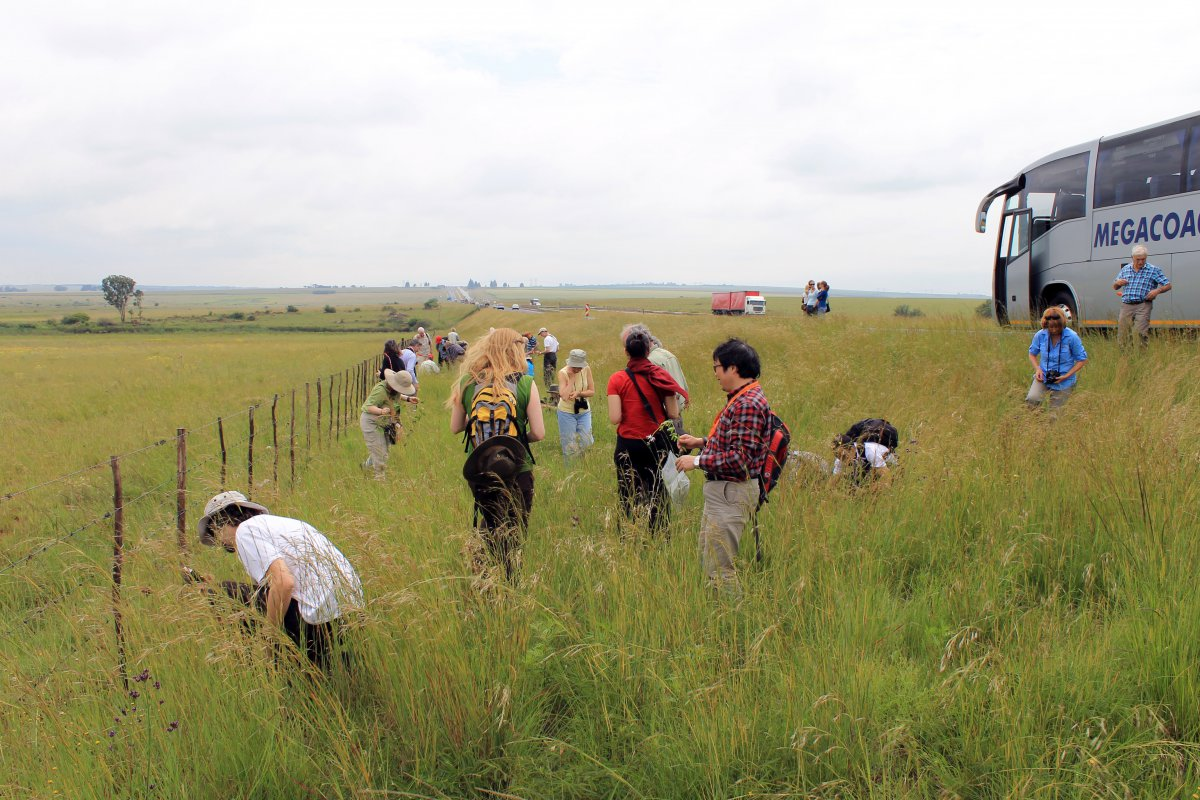 2.1 30 botanists in a road-side ditch, South Africa.