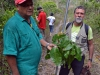 3.1 Collecting a rare tree with Ribeiro and Haroldo, Bahia, Brazil.